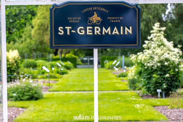 De St-Germain cocktail: L'apéritif parfait! - Nullam ...